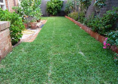 New_Lawn