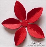 5_Petal_Poinsettia_Cut
