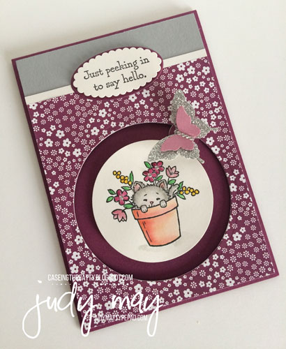Stampin' Up! Circle Spinner card for CTC92 - Judy May, Just Judy Designs