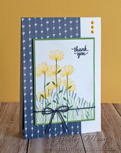 Stampin' Up!  Daisy Delight - Judy May, Just Judy Designs