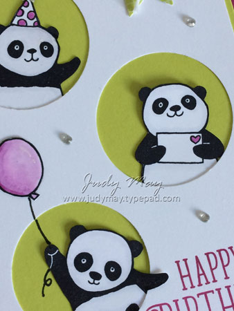 Party_Panda_Berry_Closeup