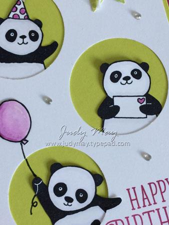 Party_Panda_Berry_Closeup