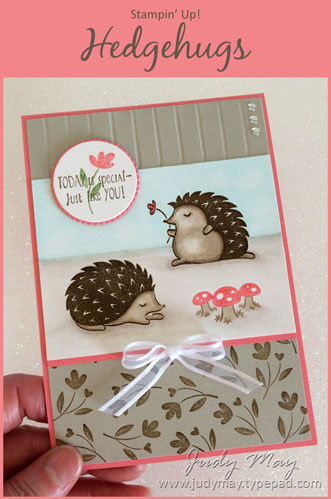 Stampin' Up! Hedgehugs - Judy May, Just Judy Designs