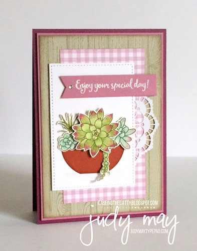 Stampin' Up! Oh So Succulent & Succulent Garden DSP for CASE-ing the Catty - Judy May, Just Judy Designs