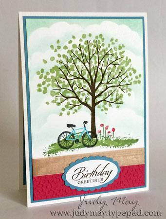Sheltering_Tree_Birthday