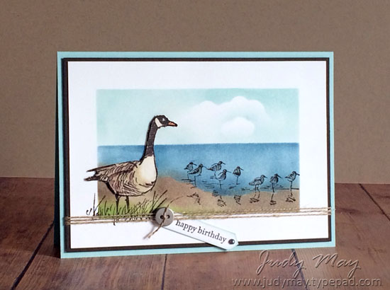Stampin' Up! Wetlands - Judy May, Just Judy Designs