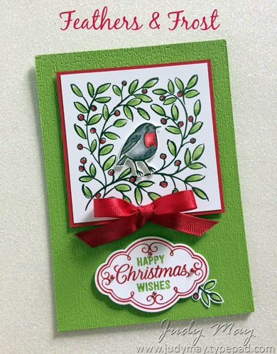 Stampin' Up! Feathers & Frost - Judy May, Just Judy Designs
