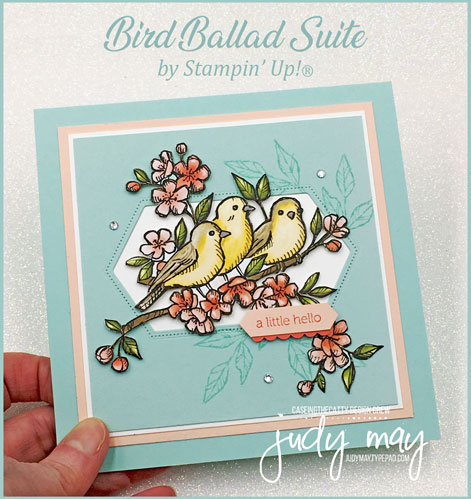Stampin' Up! Bird Ballad Suite - Judy May, Just Judy Designs, Melbourne