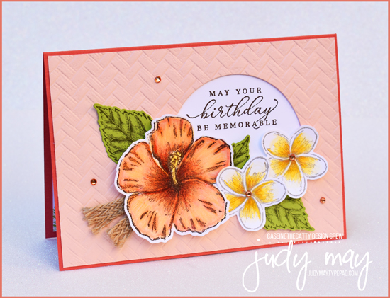 Stampin' Up Timeless Tropical Bundle - Judy May, Just Judy Designs, Melbourne